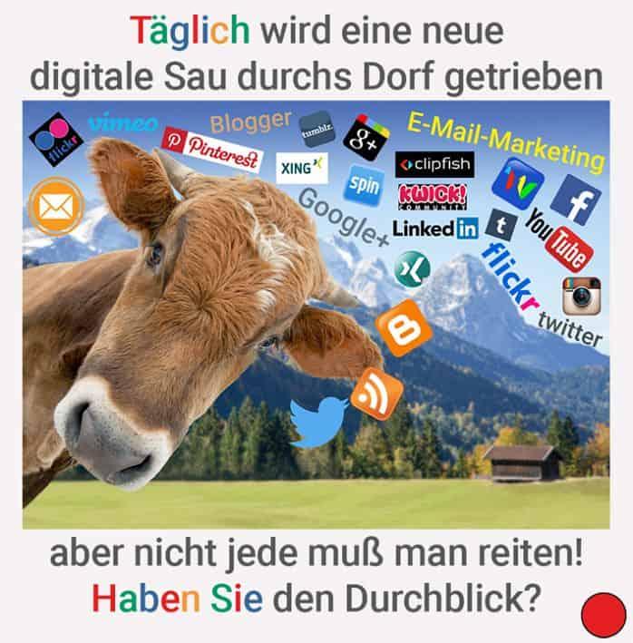 Täglich wird eine neue digitale Sau durchs Dorf getrieben, aber nicht jede muss man reiten - Reuter.marketing